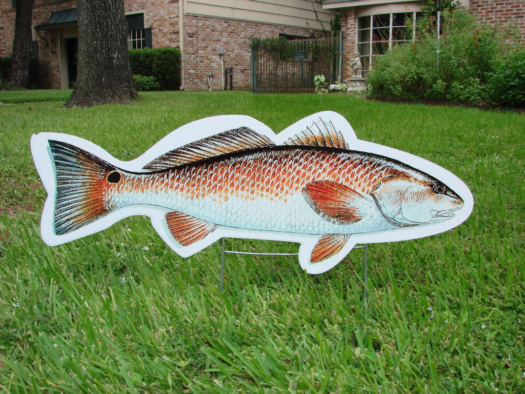 Graphic of fish