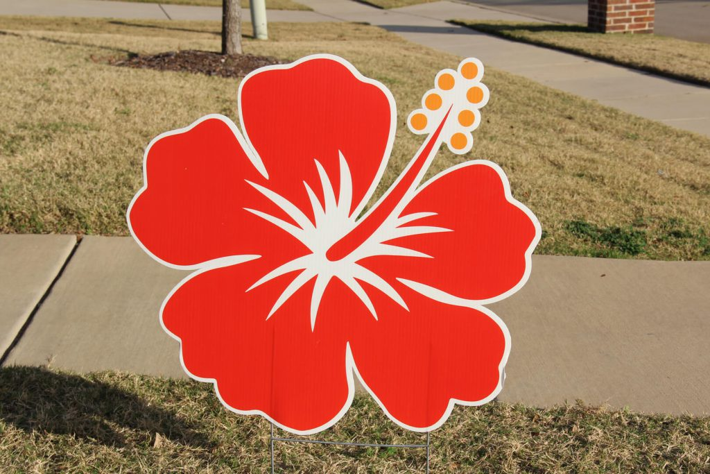 lawn graphic of red flower