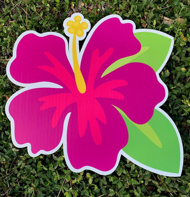 A magenta hibiscus flower