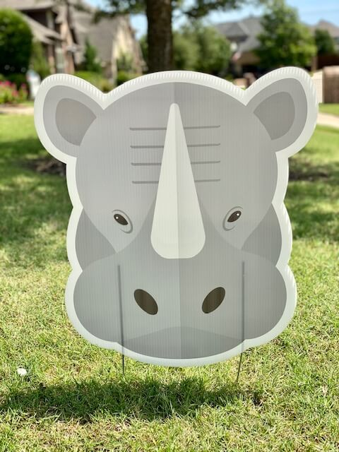 A rhino head