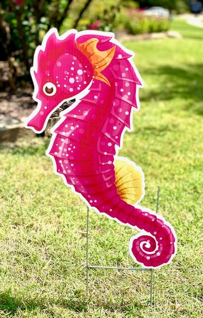 A pink seahorse