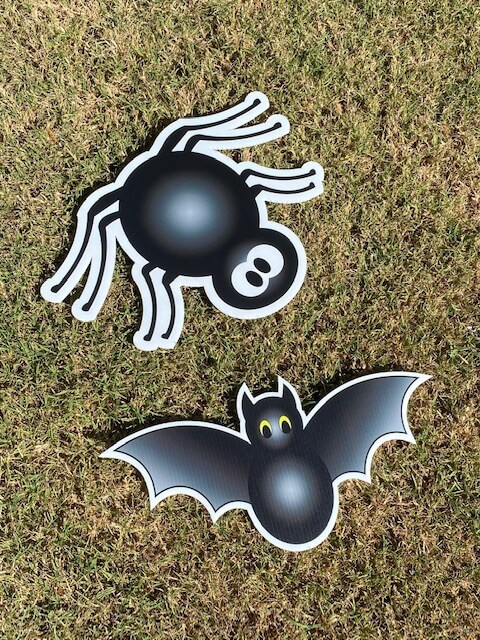 A black spider and bat
