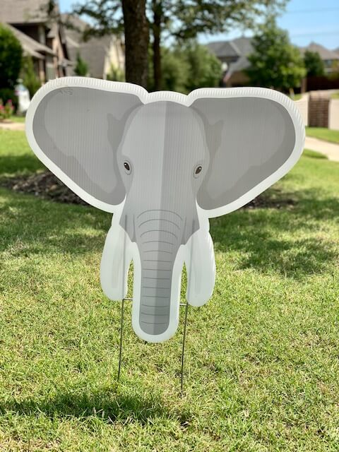 An elephant head