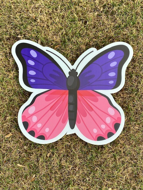 A pink and purple butterfly