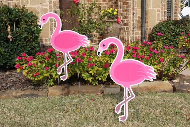 2 pink flamingos