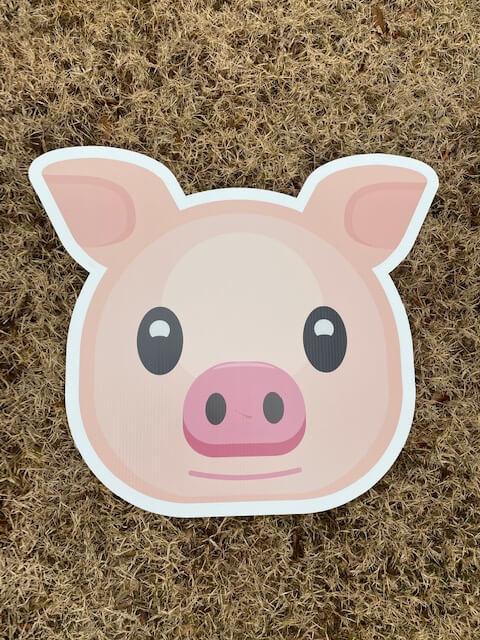 A cute pig face